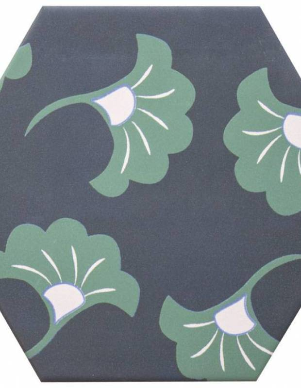 Carrelage hexagonal, la tomette grès cérame good vibes - GO0812003