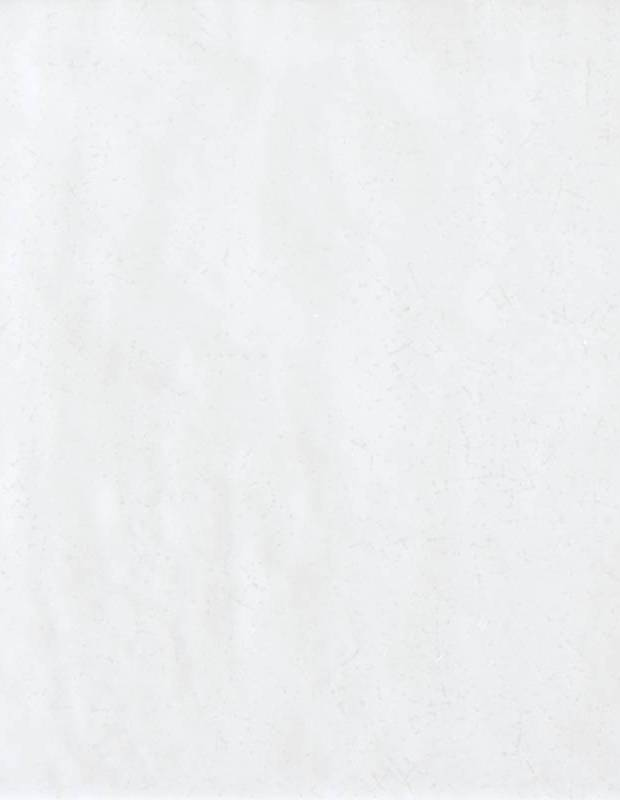 Faïence murale blanche style artisanal 15x15 cm - TR3504001