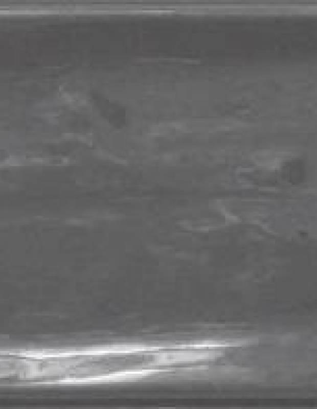 Gehämmerte Fliese 7,5 × 30 cm - LU7404042
