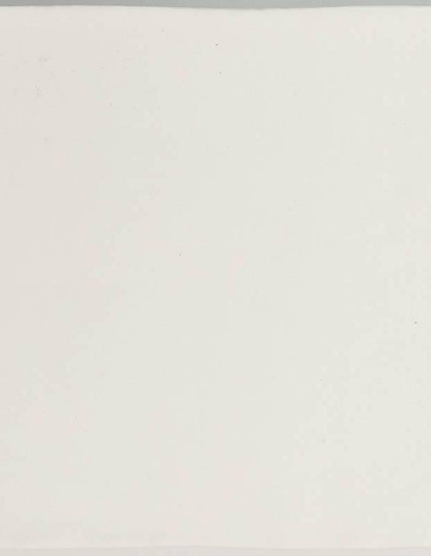 Zellij weiß matt handwerklicher Stil 12,5 × 12,5 cm - ZE5901001