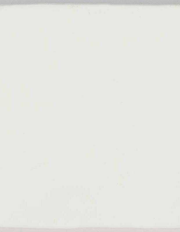 Einfarbige Fliese - ZI0802001