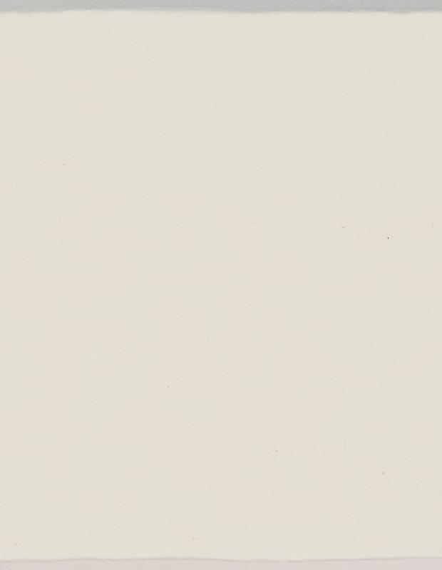 Einfarbige Fliese - ZI0802002