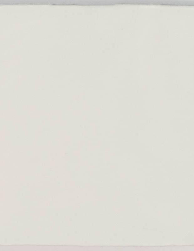 Carrelage monochrome - ZI0802005